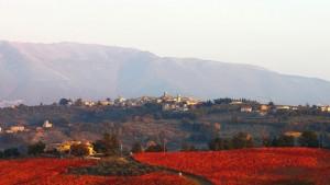 Montefalco, le colline dell'Umbria la terra del Sagrantino